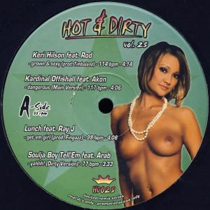 Various - Hot & Dirty 25 [LP]