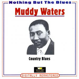Muddy Waters - Country Blues [CD]