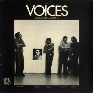 Voices - Rediscover The Beautiful [LP]