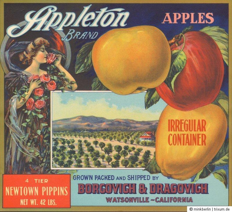 Etikett für Apfelkiste / Äpfel - ca. 1920 - Appleto Brand / Jugendstil -  # 661