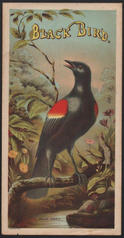 Etikett für Tabak - tobacco label - Black Bird - Chromolithografie von 1886 # 64