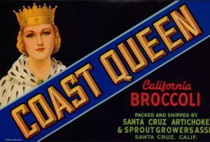 Etikett für Gemüse / Broccoli / COAST QUEEN Vegetable crate label - ca1950 #621