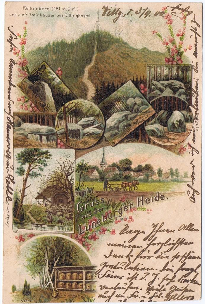 Litho,Gruß aus Lüneburger Heide,gel.1900  0