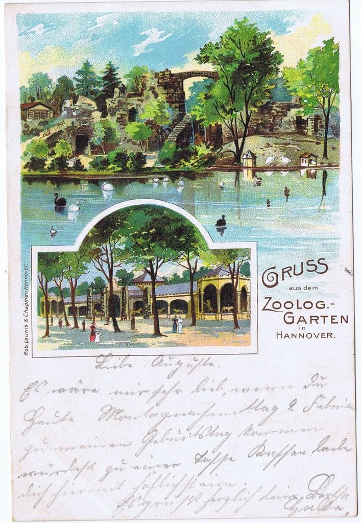 Litho,Gruß aus Hannover,gel.1903 0