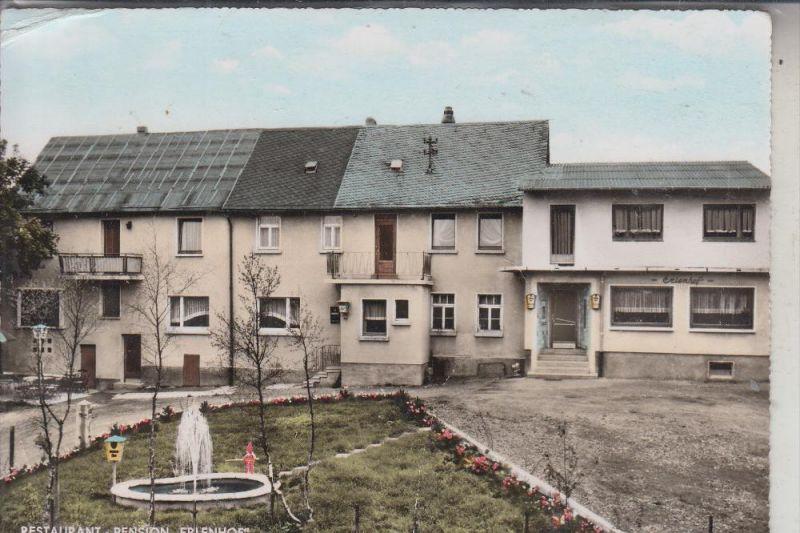 5238 Hachenburg Steinebach Restaurant Pension Erlenhof