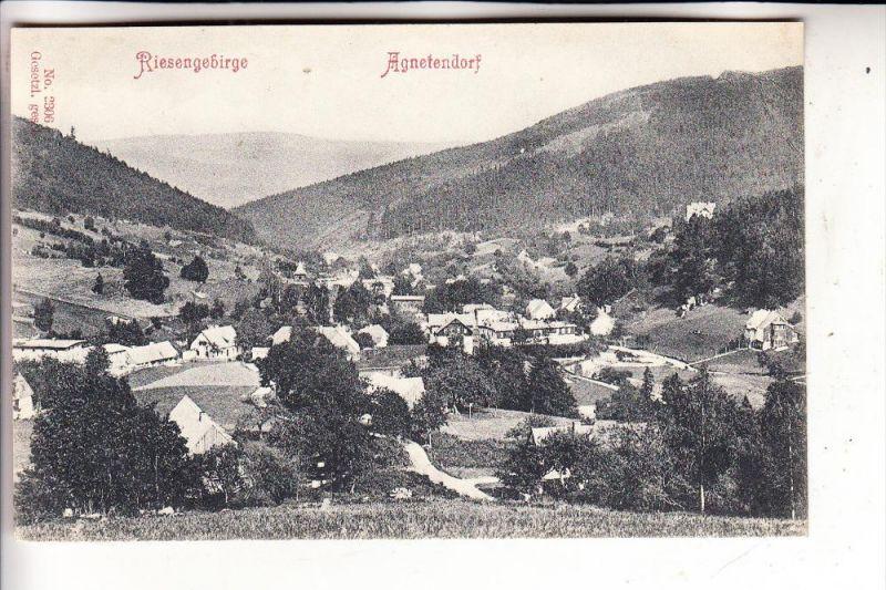 SCHLESIEN - NIEDERSCHLESIEN - AGNETENDORF / JAGNIATKOW, Panorama, 1907