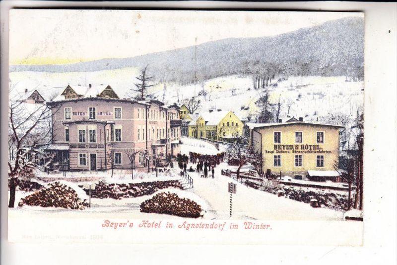 SCHLESIEN - NIEDERSCHLESIEN - AGNETENDORF / JAGNIATKOW, Beyer's Hotel