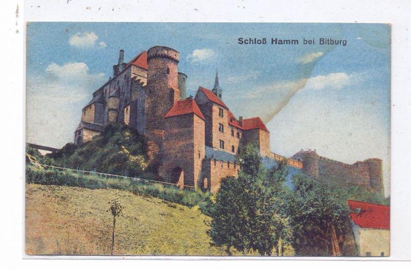 5521 HAMM, Schloss Hamm bei Bitburg, leicht fleckig
