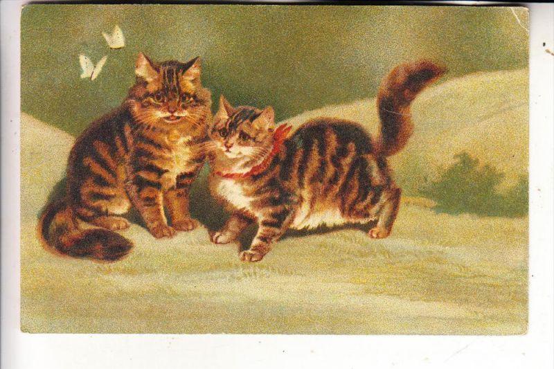 TIERE - KATZEN / Cats / Chats / Gatti / Gatos / Katten - Katzen und Schmetterlinge, Künstler-Karte 1917
