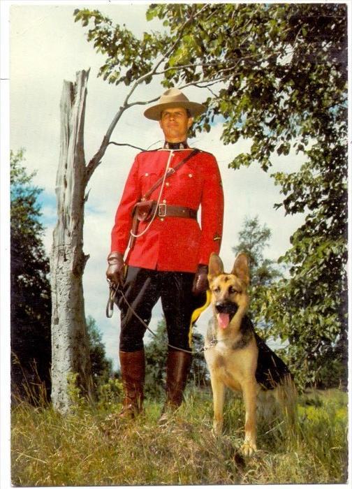 POLIZEI - Royal Canadian Mounted Police, Deutscher Schäferhund