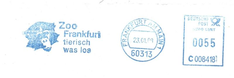 TIERE - ZOO, Zoo Frankfurt, Schimpanse, Freistempler
