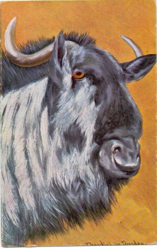 KÜNSTLER - ARTIST - ANTONIO DONADINI - GNU