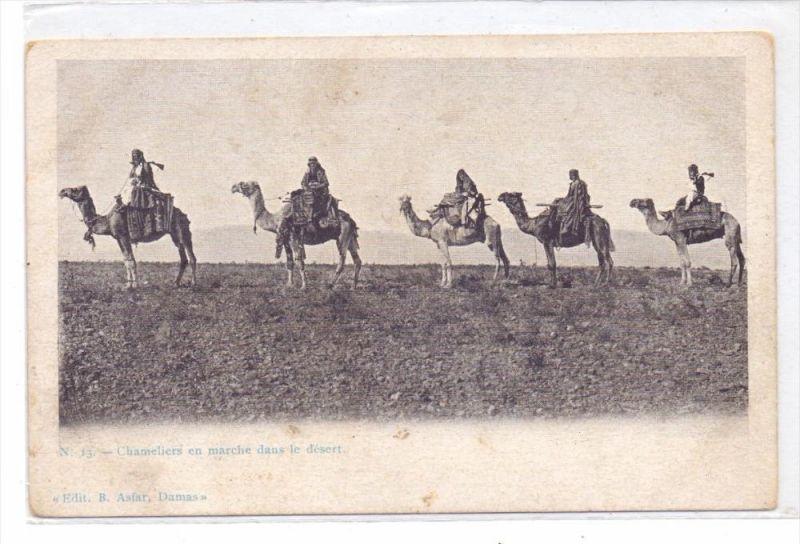 TIERE - KAMELE / Camel / Chameau / Cammello / Kameel / Camello - Syrische Wüste