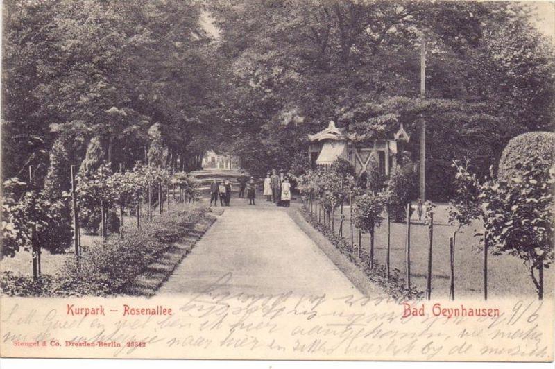 4902 BAD SALZUFLEN, Rosenallee im Kurpark, 1903 0