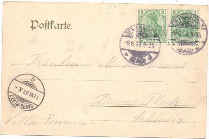 4902 BAD SALZUFLEN, Rosenallee im Kurpark, 1903 1