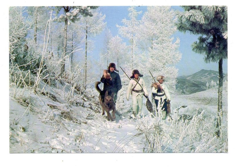 JAGD - HUNTING - JACHT - CHASSE - CACCIA - CAZA - LOWIECTWO, Winter Hunting