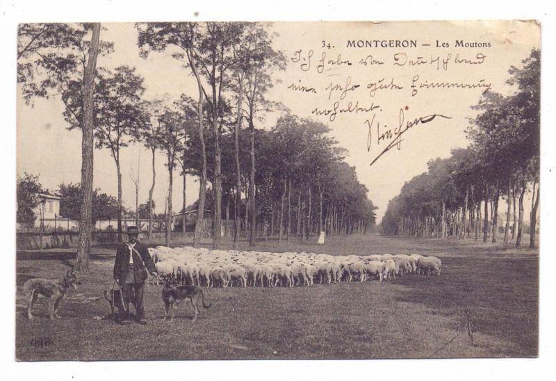 LANDWIRTSCHAFT - Schafherde, 1909, Montgeron