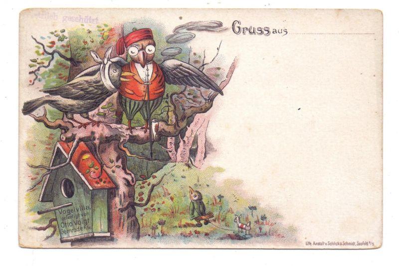 TIERE - EULEN / Owls / Buho / Hibou / Uil / Gufo - Lithographie ca. 1905, Eule als Vogelarzt