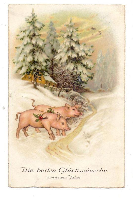 SCHWEINE - Pigs / Porcs / Maiali / Varkens / Cerdos - Zwei Schweine im Winterwald, 1933