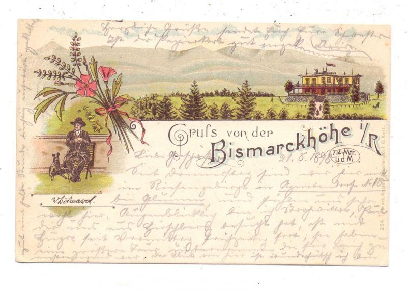 NIEDER-SCHLESIEN - BISMARCKHÖHE / SZCZYGLICE, Lithographie 1898