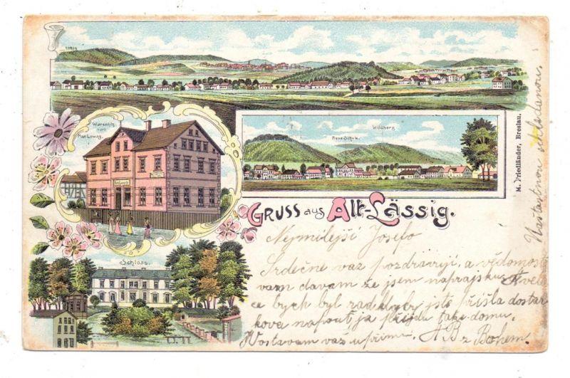 NIEDER-SCHLESIEN - ALT-LÄSSIG, Krs. Waldenburg, Lithographie, Warenhandlung Lowag, Schloss, Panorama..