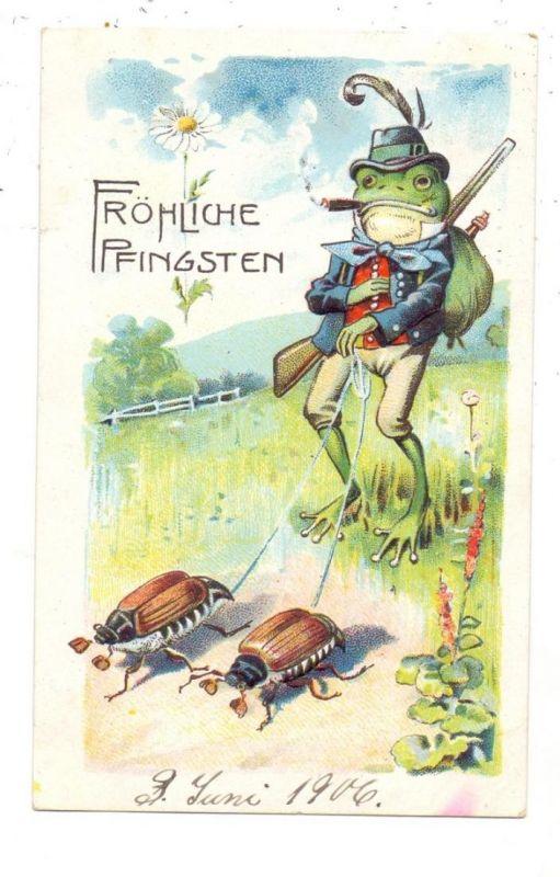 TIERE - FRÖSCHE / Frogs / Kicker / Grenouilles / Rane / Ranas - Frosch mit Maikäfer, geprägt / relief / embossed, 1906