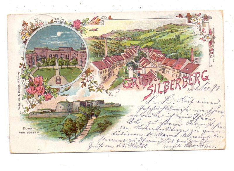 NIEDER-SCHLESIEN - PETERWITZ - SILBERBERG / STOSZOWICE, Lithographie 1898, Donjon und Ortschaft 0