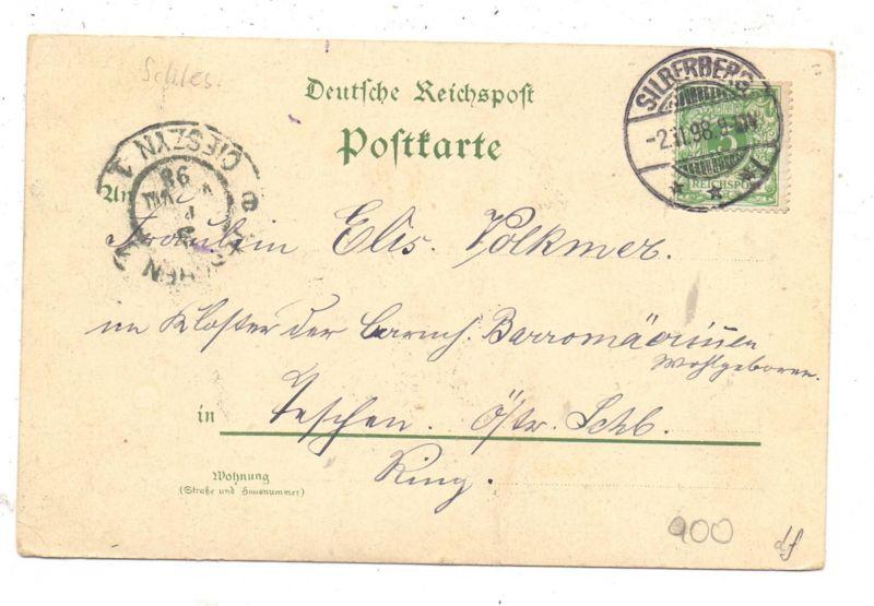 NIEDER-SCHLESIEN - PETERWITZ - SILBERBERG / STOSZOWICE, Lithographie 1898, Donjon und Ortschaft 1