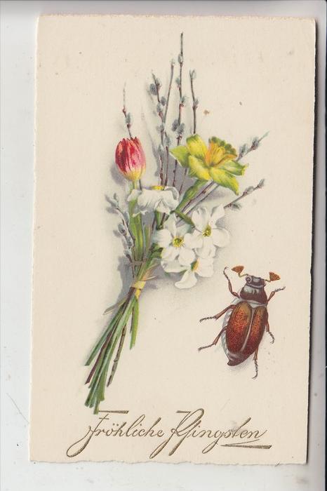 PFINGSTEN - MAIKÄFER, Blumenstrauss