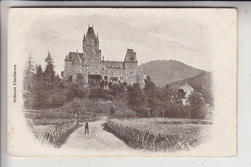 A 5671 BRUCK an der Großglocknerstrasse, Schloss Fischhorn, ohne rücks, AK-Einteilung