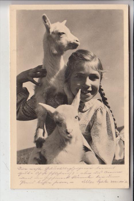 TIERE - ZIEGEN / Goats / Geiten / Chevre & Kind