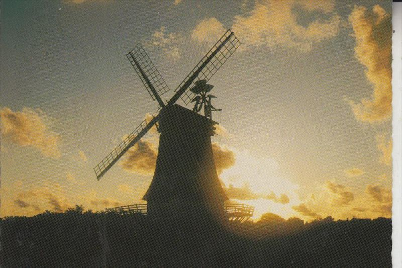 WINDMÜHLE / Mill / Molen / Moulin - OLDSUMER MÜHLE / FÖHR