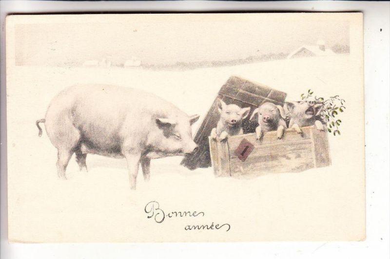 NEUJAHR - Künstler-Karte 1921, Brüder Kohn, Wien - Schweine / Pigs / Porcs / Cerods / Varkens / Maiali