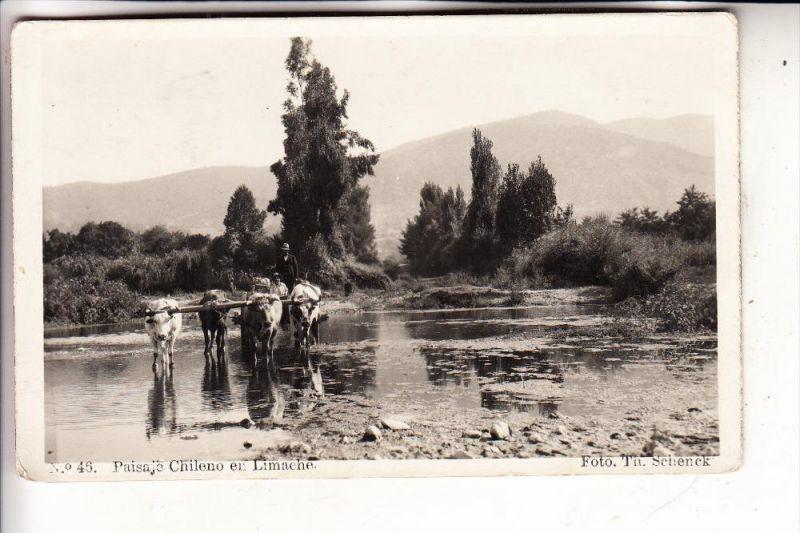 CHILE, Paisaje Chilen en Limache