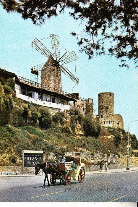 WINDMÜHLE / Mill / Molen / Moulin - PALMA DE MALLORCA