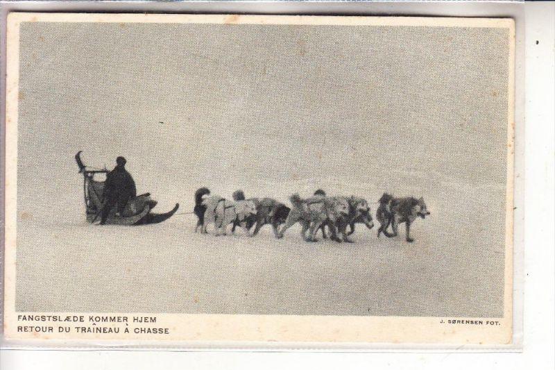 GRÖNLAND / GREENLAND, Polar, Fangstslaede Kommer Hjem, Schlittenhunde / Huskies, Eckknick