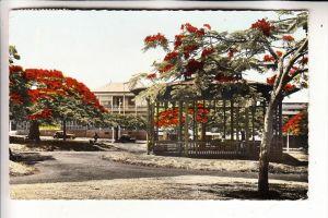NOUVELLE CALEDONIE / NEU KALEDONIEN - NOUMEA, Kiosque a Musique, Place de Cocotiers