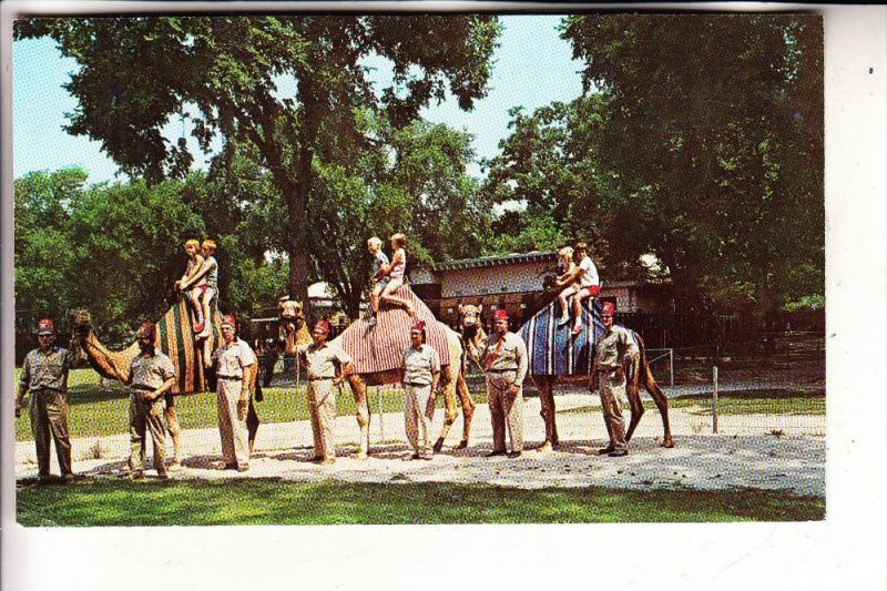 USA - WISCONSIN - MADISON, Henry Vilas Park Zoo, Camels