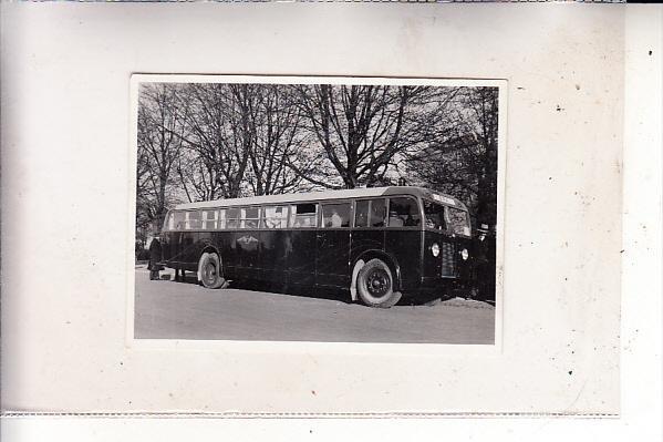 EESTI / ESTLAND - TALLINN / REVAL, Omnibus, Photo 6,4 x 8,7 cm