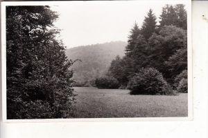 5064 RÖSRATH - HOFFNUNGSTHAL, Sülztal, 1949