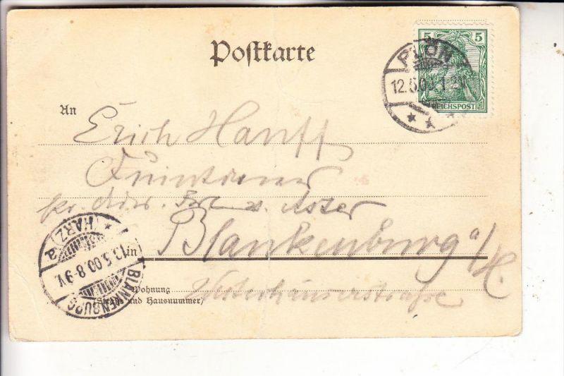 2320 PLÖN, Schwanensee, 1900, kl. Druckstelle 1