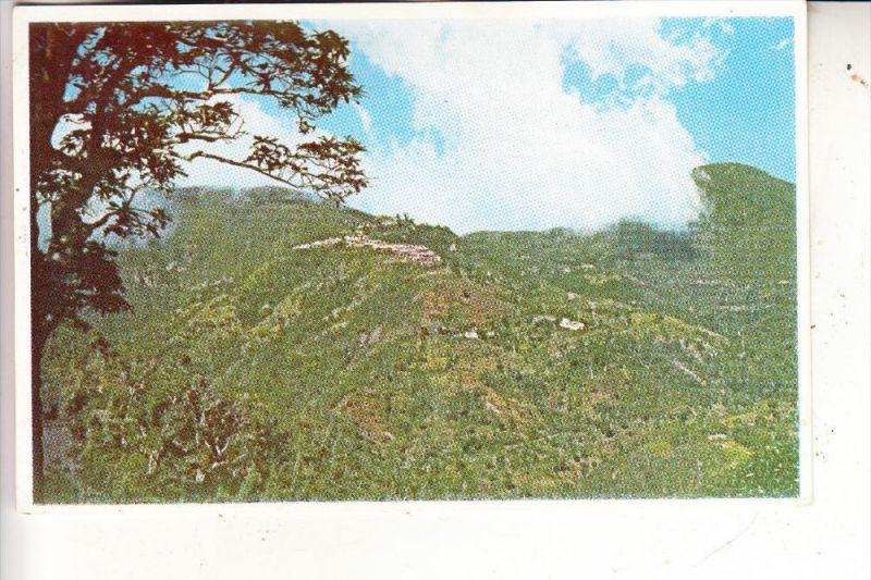 JAMAICA, Newcastle Military Encampment, 1958