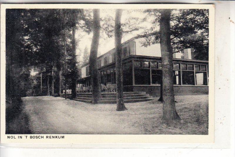 NL - GELDERLAND - RENKUM, Nol in t'bosch, 1953