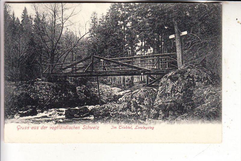 0-9704 FALKENSTEIN - TRIEB, Triebtal, Loreleysteg, 1906
