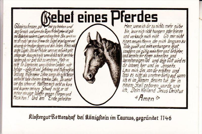 6240 KÖNIGSTEIN - RETTERSHOF, Gebet eines Pferdes
