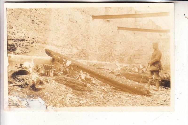 F 02370 OSTEL, Folemprise Ferme, 1.Weltkrieg, Photo-AK