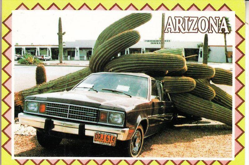 AUTO - FORD US, Arizona, Humor