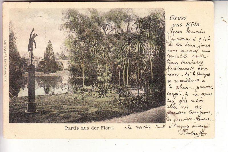 5000 KÖLN, FLORA, Partie aus der Flora, 1903