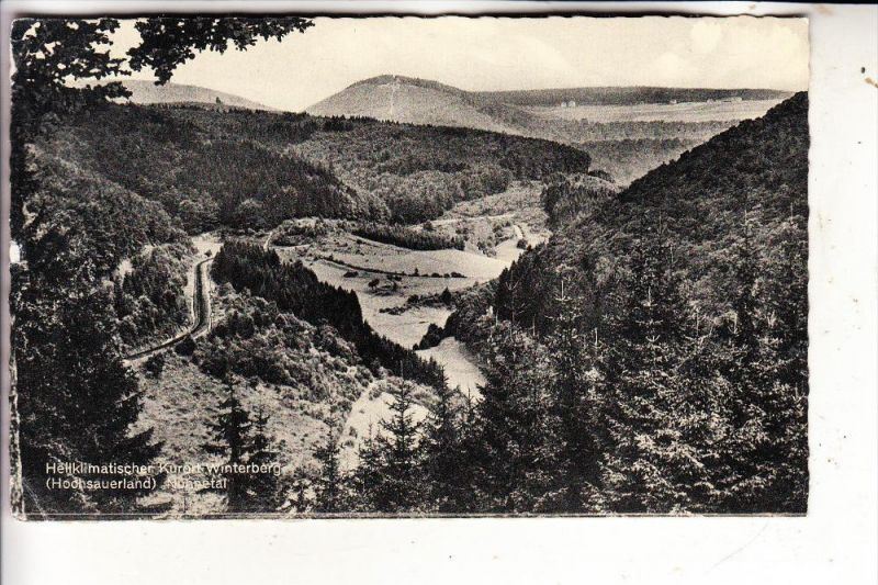 5788 WINTERBERG, Nuhnetal, 1961
