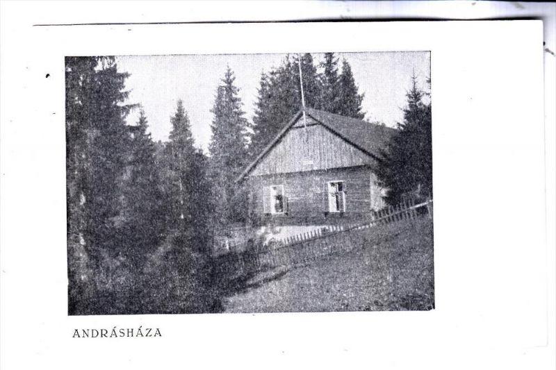ROMANIA / RUMÄNIEN - ANDRASHAZA, Hütte